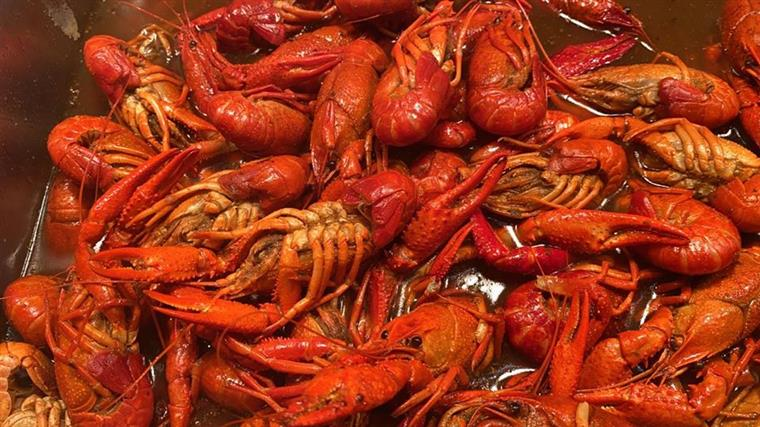 steamed crawfish in a tray