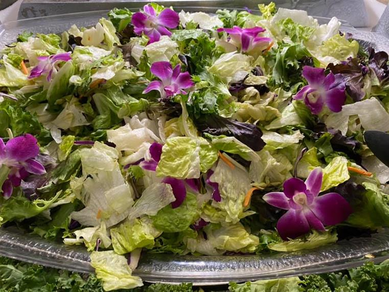bowl of salad with iceburg and romaine lettuce, cabbage, shredded carrots, and edible flowers