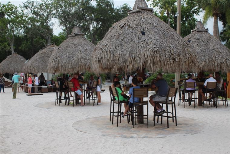 patrons dining under straw huts