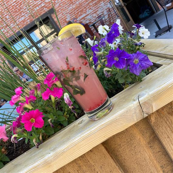 pomegranate mint cocktail on the ledge of a flower bed