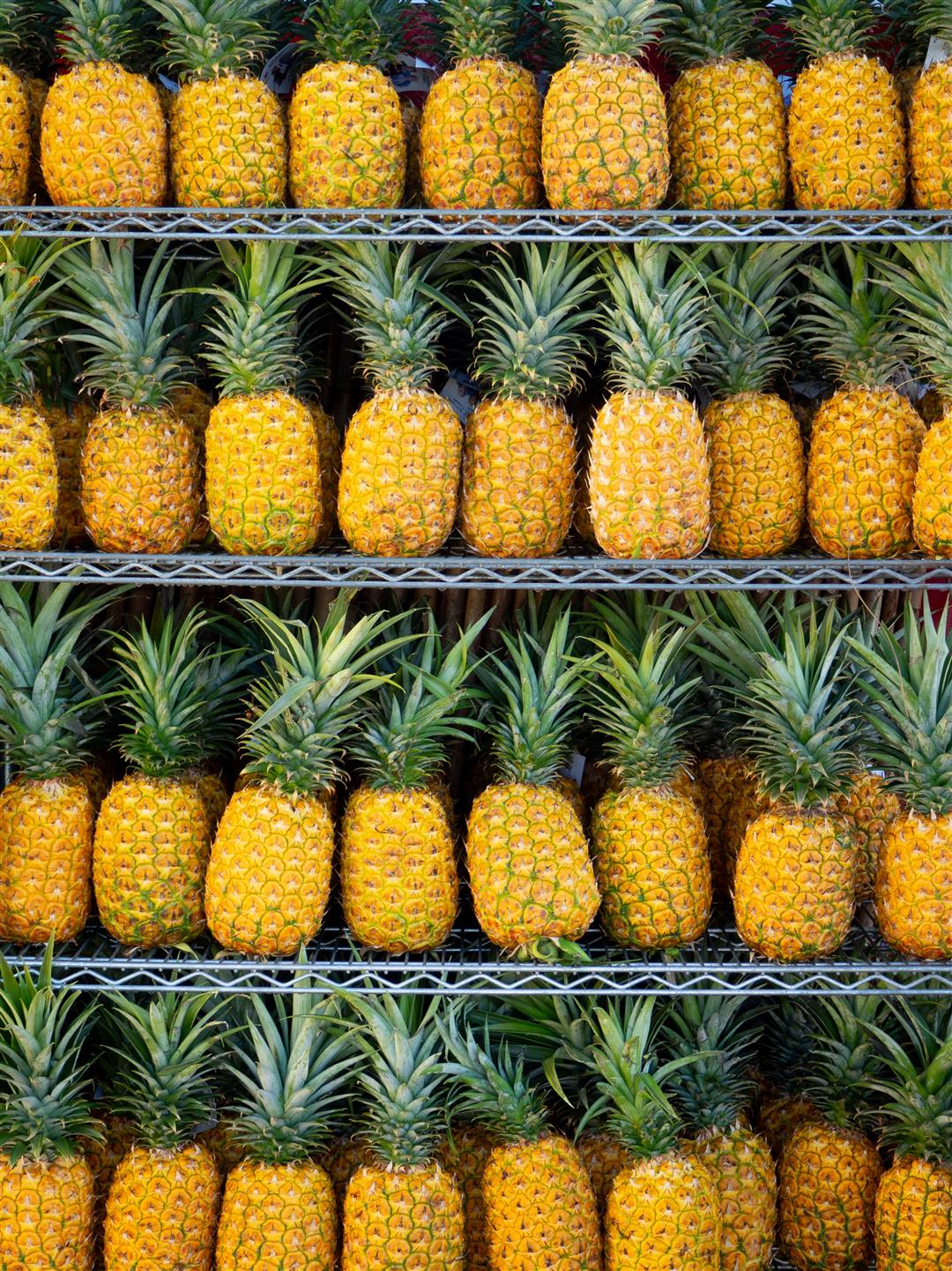 a couple lines of pineapples