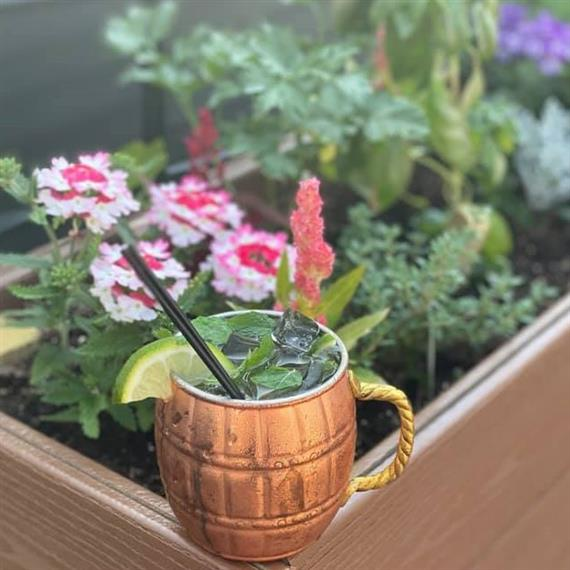 moscow mule by the garden