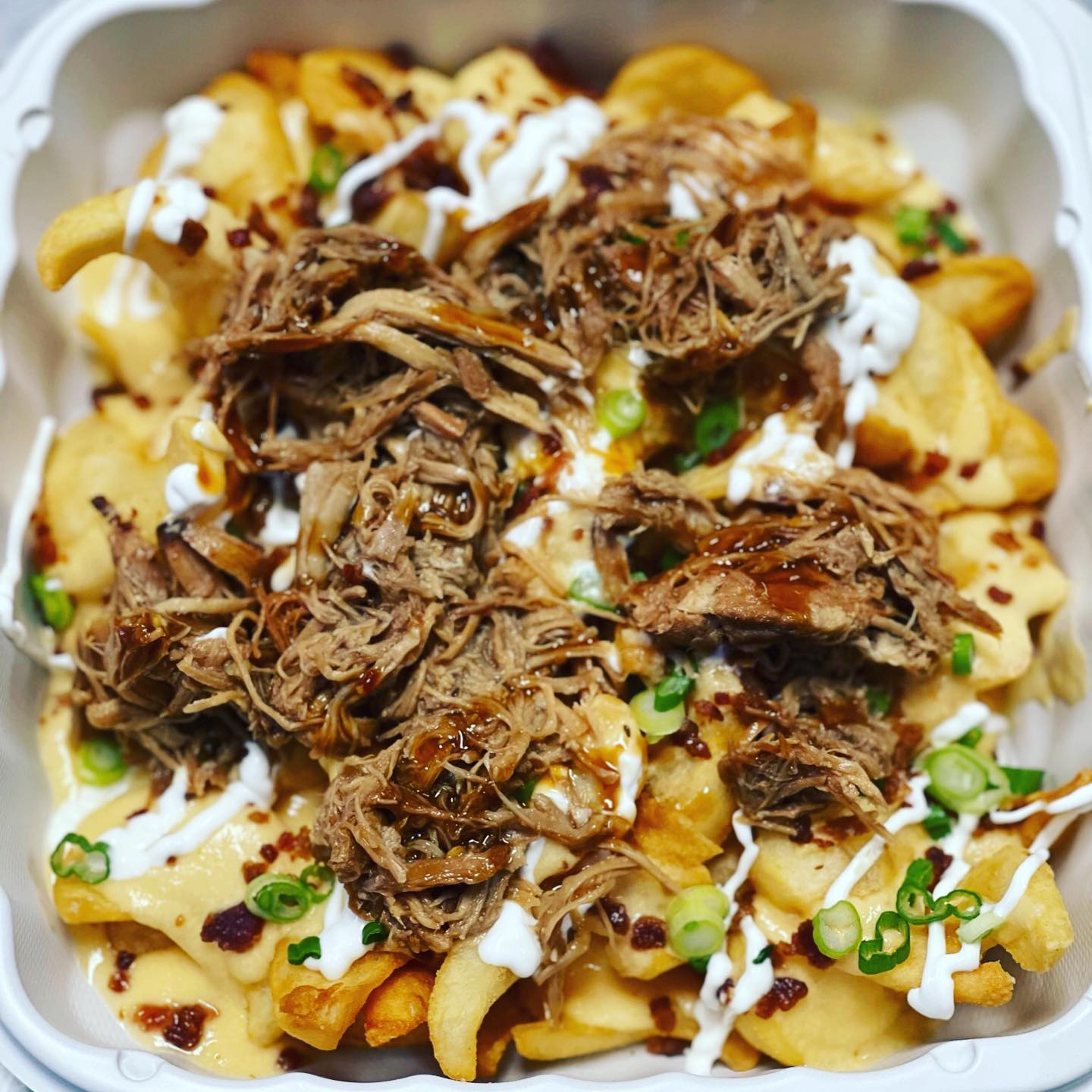 fries topped with cheese, shredded meat, sauce, and chives