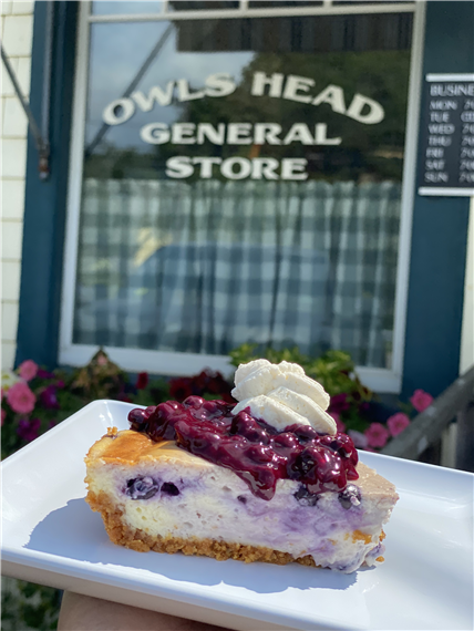 blueberry cake with blueberry topping and whipped cream