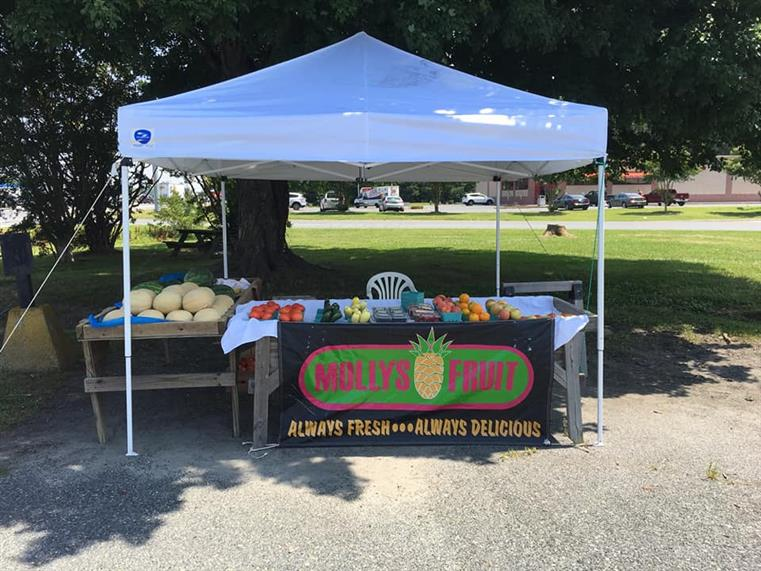 tent setup with Molly's Fruit logo hanging from a table