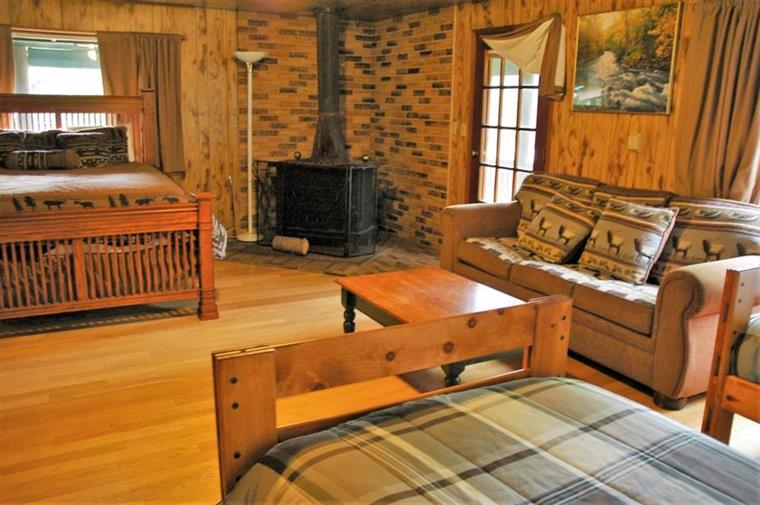 birch cottage with two beds, couch, and fireplace