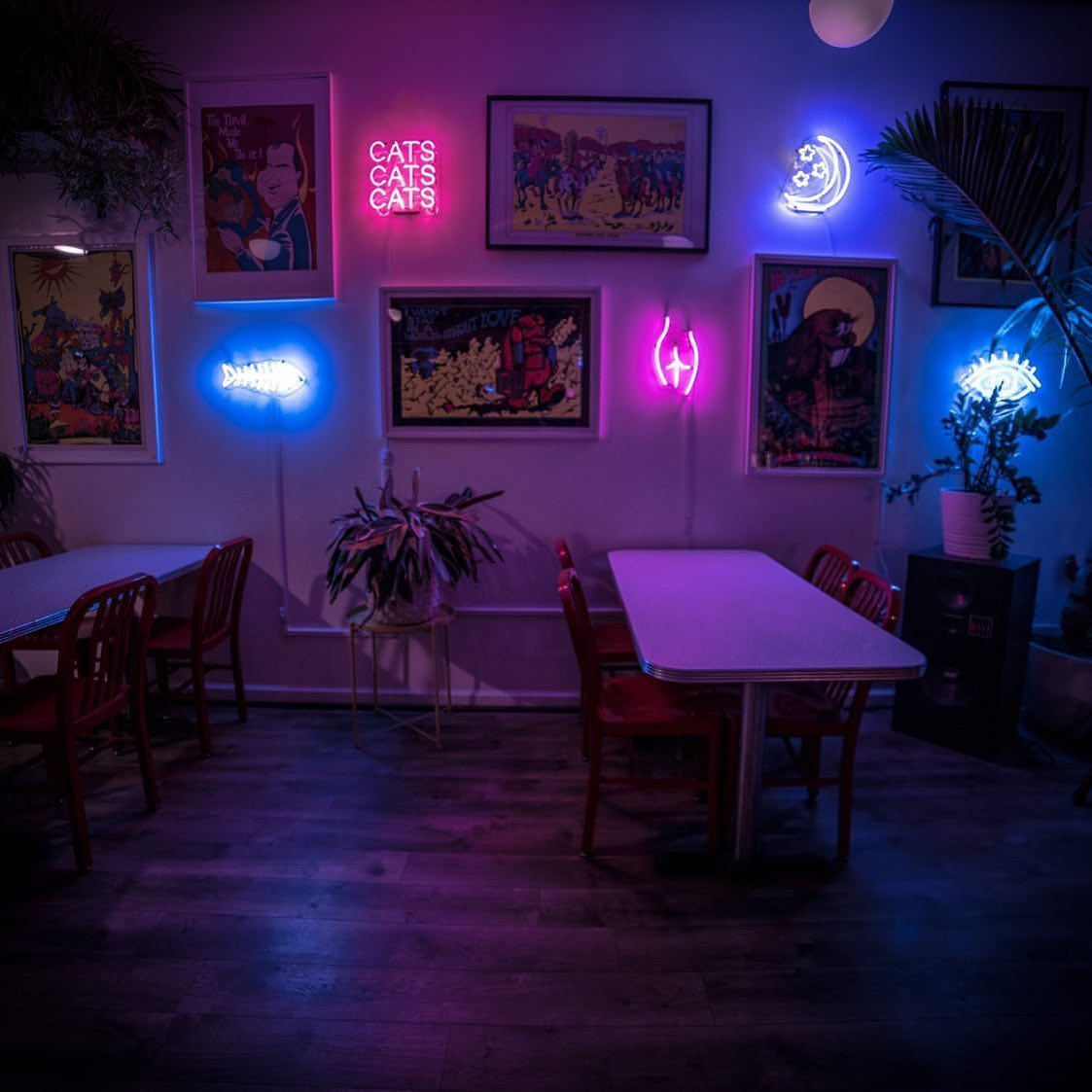 dining room with neon lights