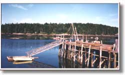 river harbor with bridge connecting to canoe