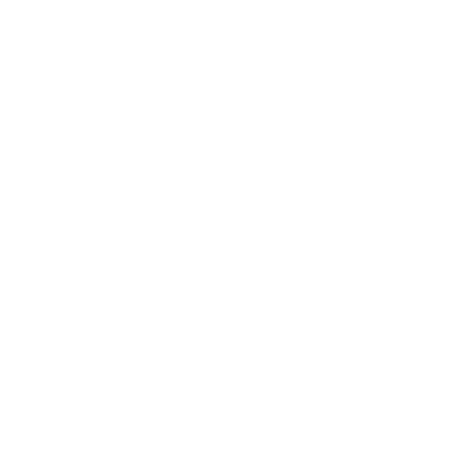 outlined pizza icon