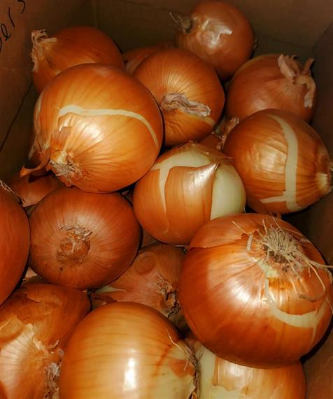 red onions in a box