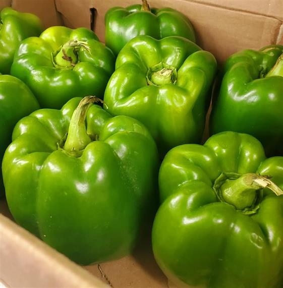 green peppers in a box