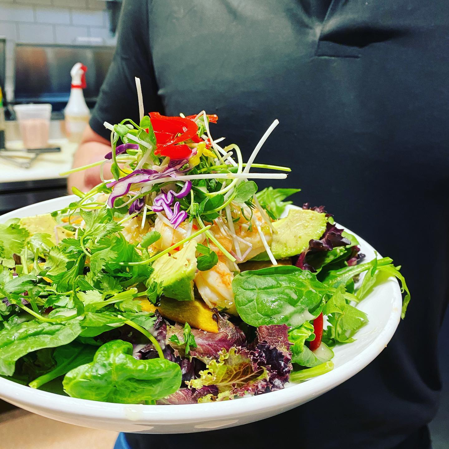 Shrimp Ceviche in a Bed of Salad & Microgreens