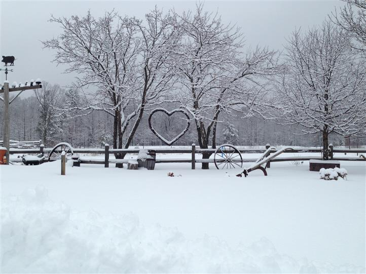 snow-covered trees, fences, and metal heart