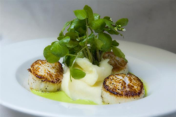 Grilled scallops served with puree and fresh greens