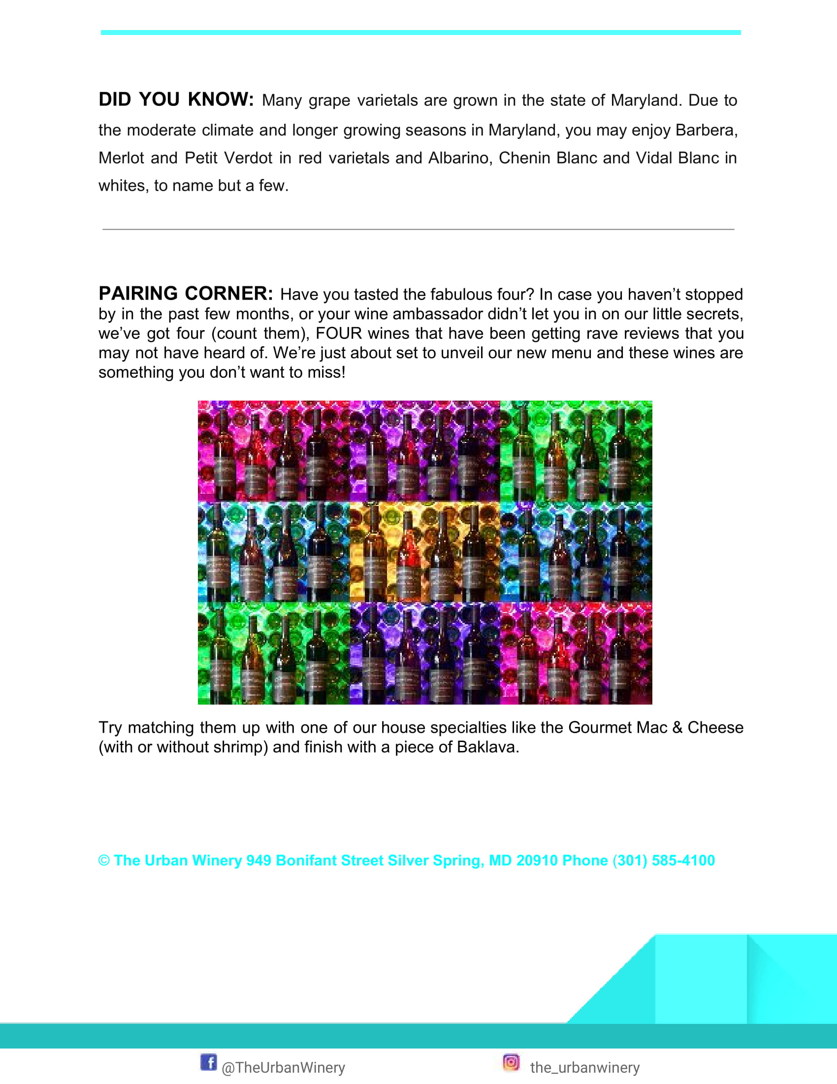 Page 5 January Newsletter