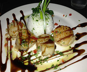 Scallops and side on white dish