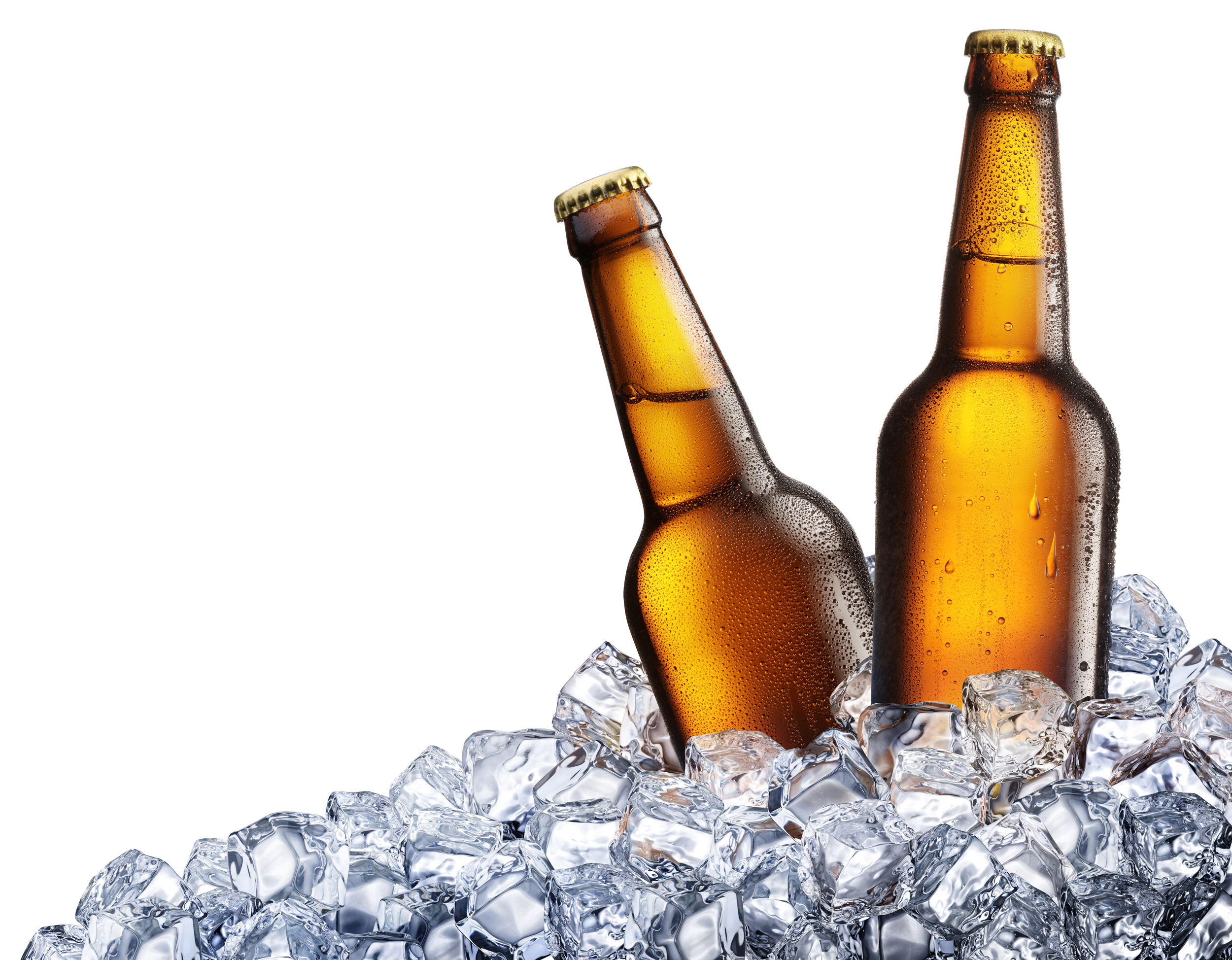 Beer Bottles on Ice