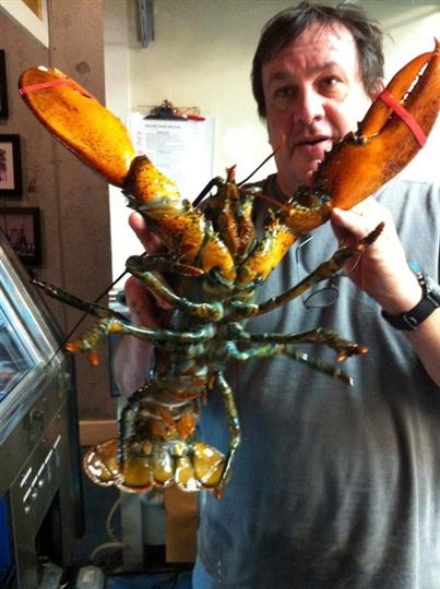 a man holding up a live lobster