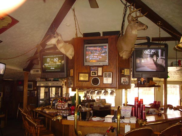 Bar area with deer heads hanging above