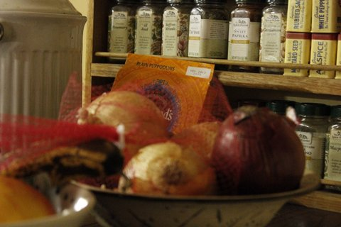 Raw onions in bowl on counter in front of spices in rack