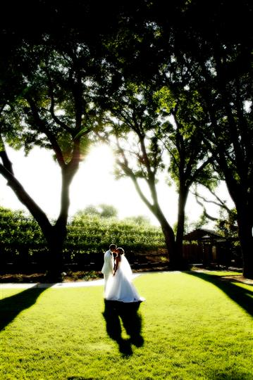 Bride and groom out on grass, sunny day