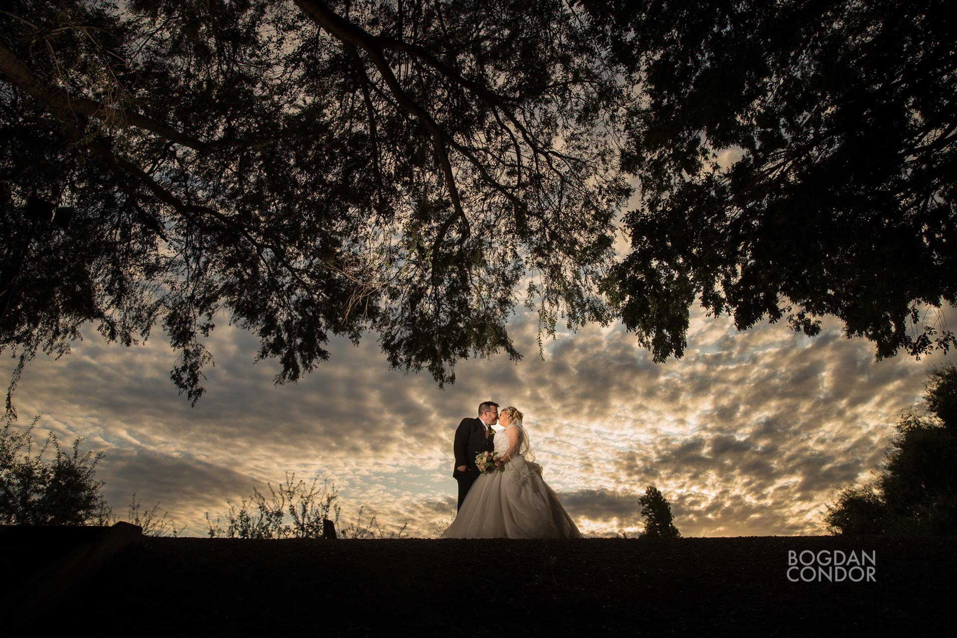 Bride and Groom under trees and clouds at sunset