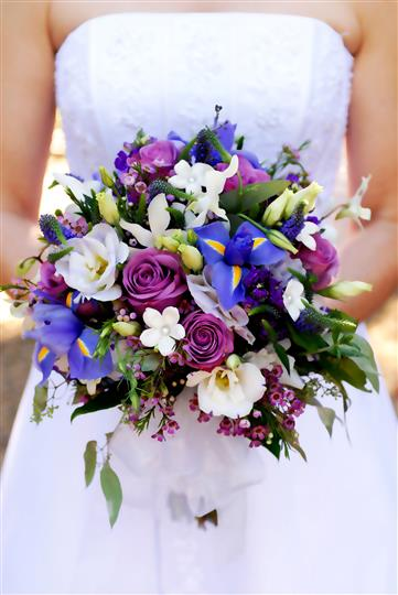 Bride holding purple and blue flower bouquet