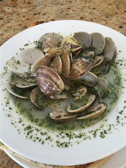 Steamed mussels in a herbed sauce