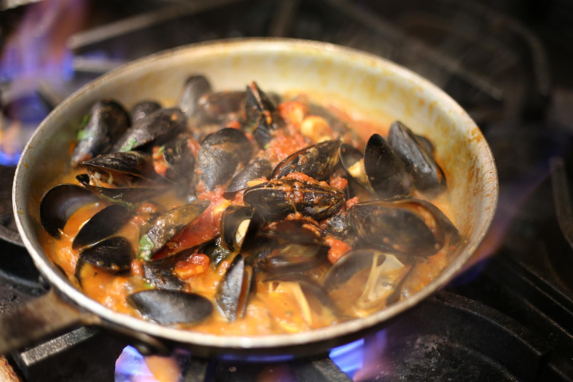 Mussels Marinara being sauteed in a pan.