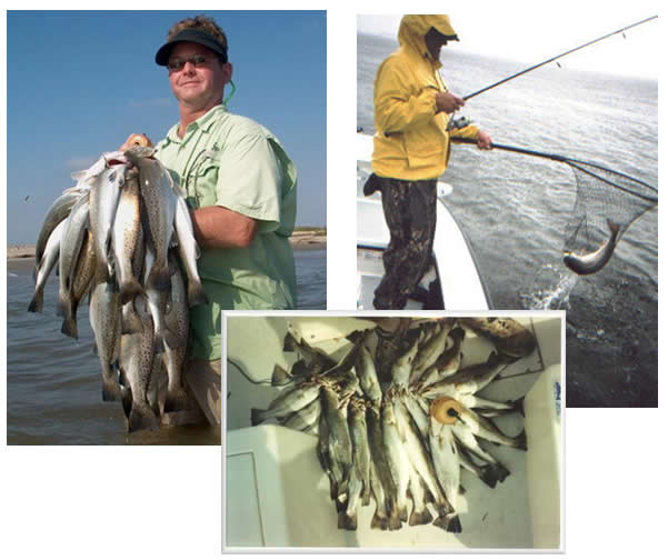 Three photos of a man that is fishing and the fish he caught