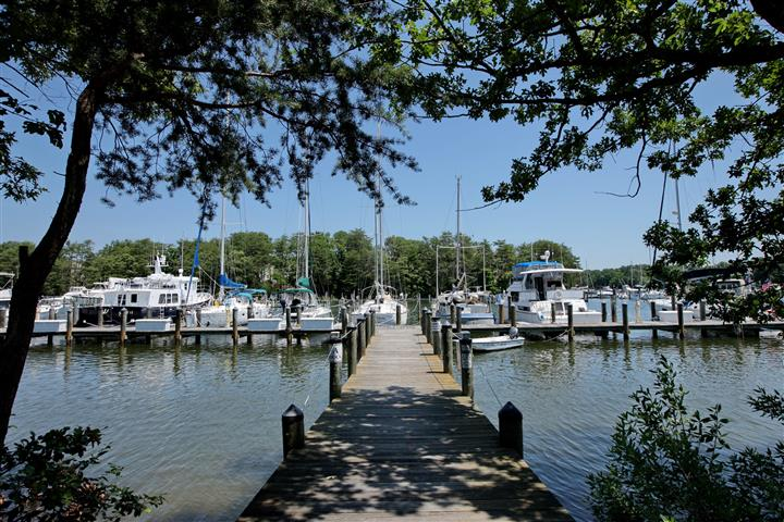 Outdoor photo of the waterfront with a deck leading to the marina