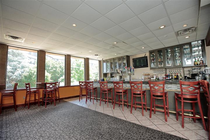 Bar counter with stolls by big windows overlooking green trees