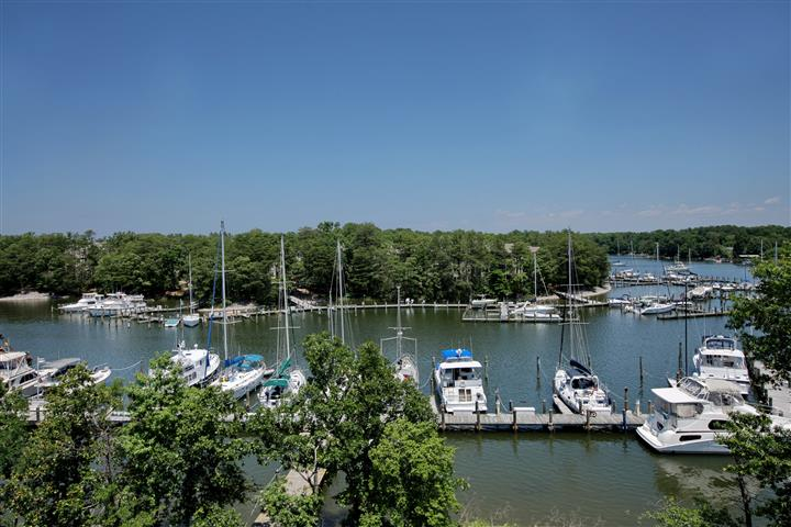 Outdoor photo of the marina with small boats and a backdrop of green trees