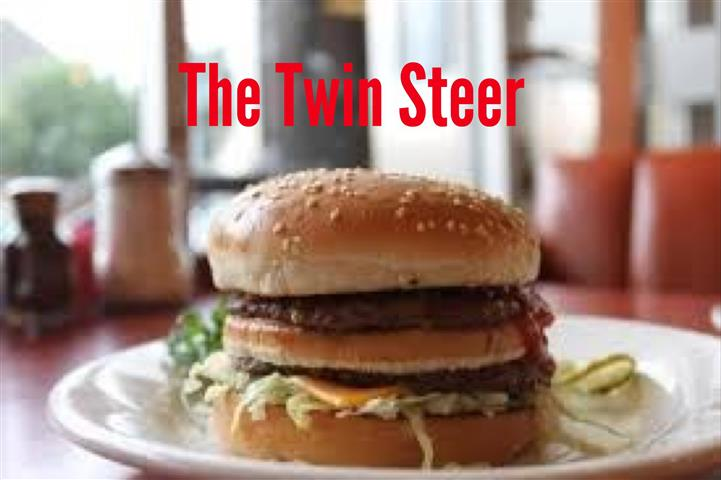 The Twin Steer