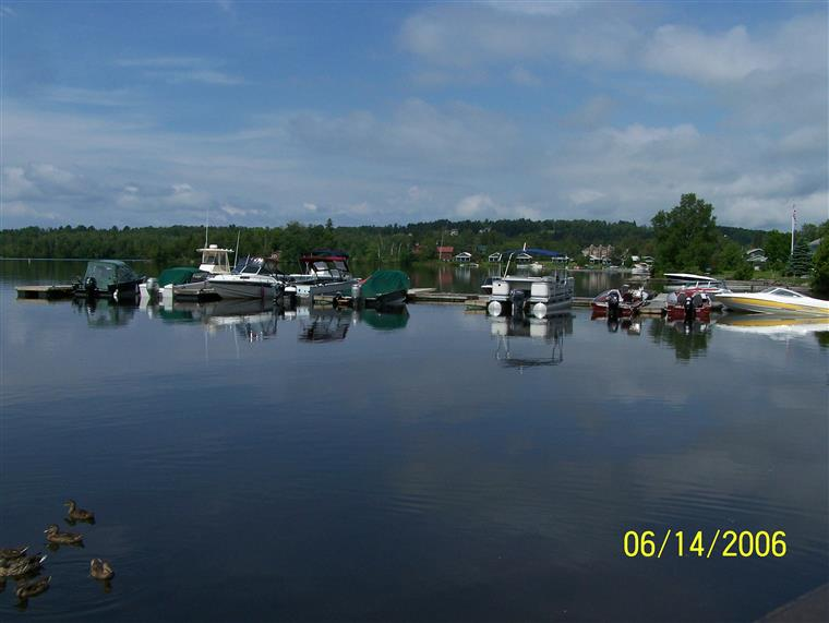 several boats docked at the marina