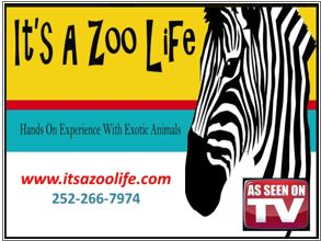It's a zoo life. Hands on experience with exotic animals. As seen on TV. www.itsazoolife.com. 252-266-7974.