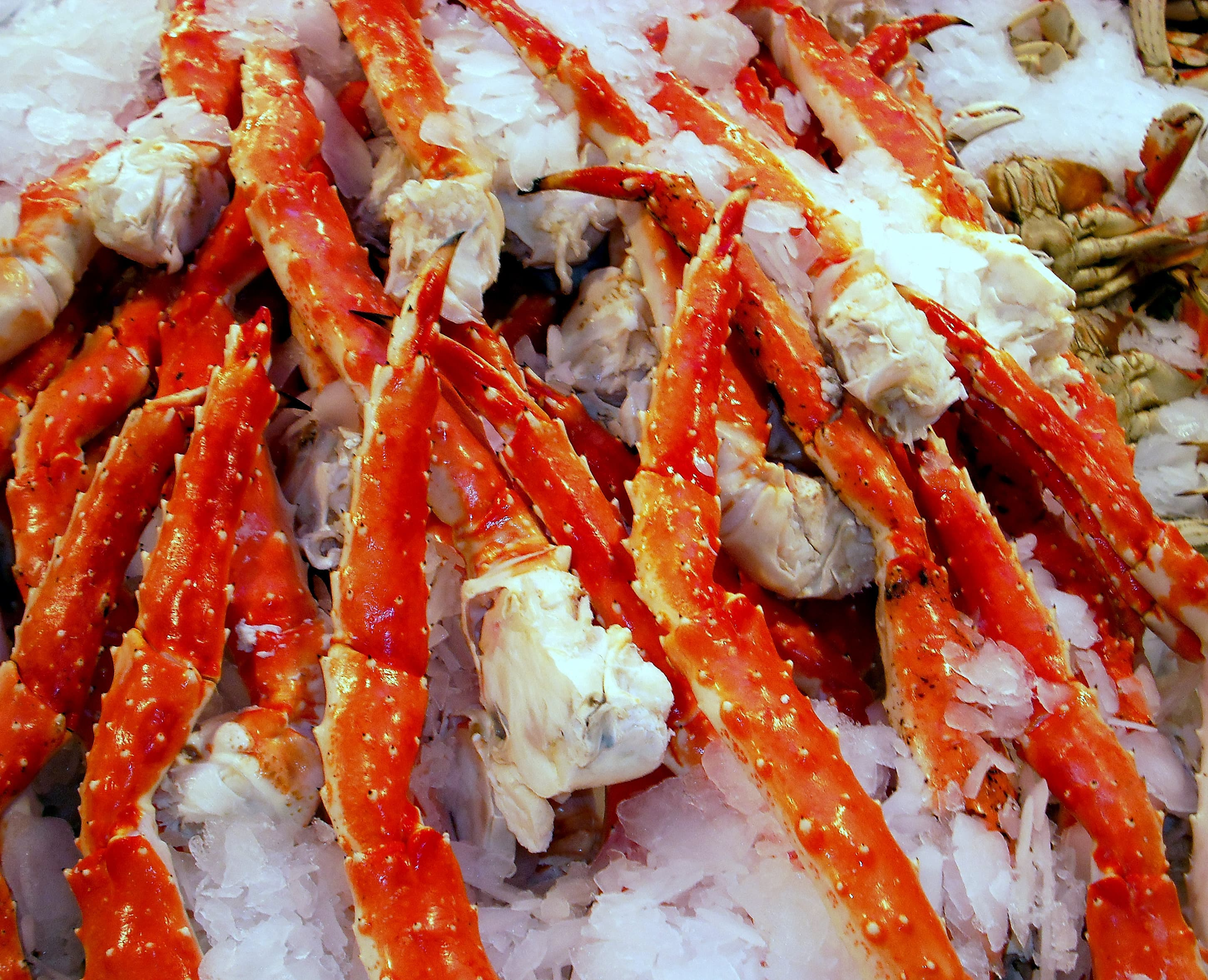 Red Crab legs over ice