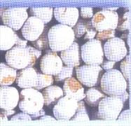 Chick peas Hard White