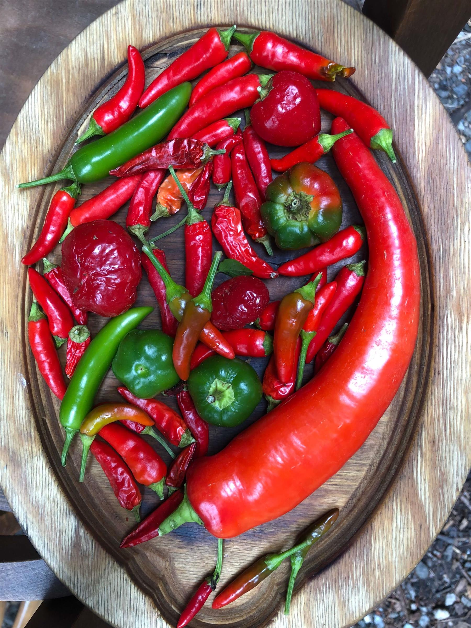 jalapeño peppers on a wooden tray