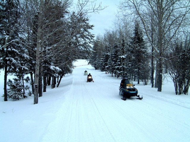 Snowmobilers on snow-covered road.
