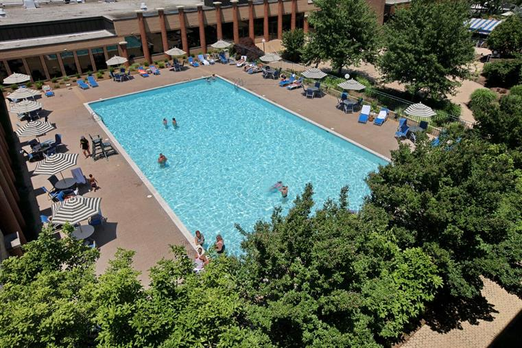 Aerial view of large swimming pool and trees