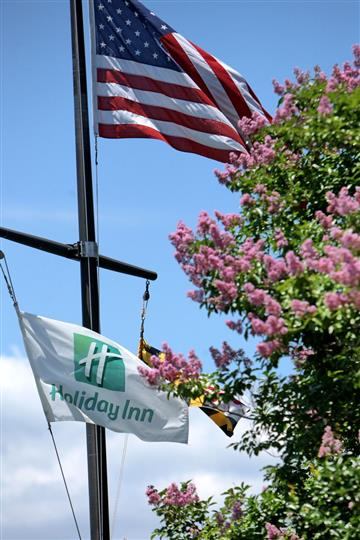 American flag and holiday inn flag on flagpole next to tree
