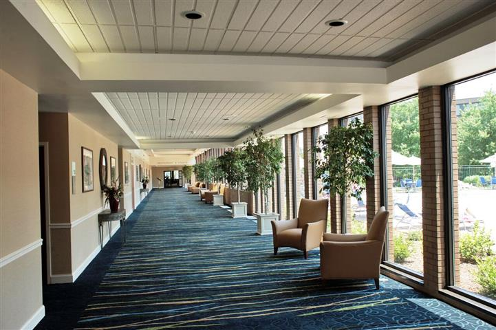 Corridor of hotel lined with potted trees and chairs.