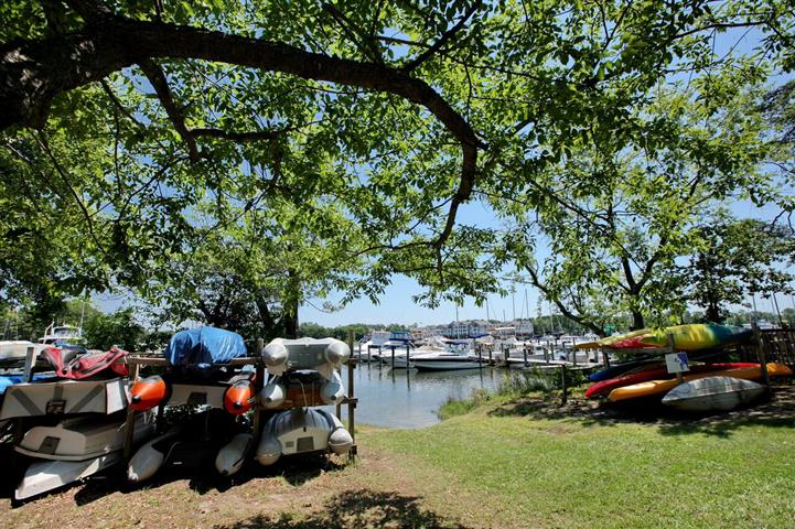 Canoe racks under trees and view of boats docked on marina