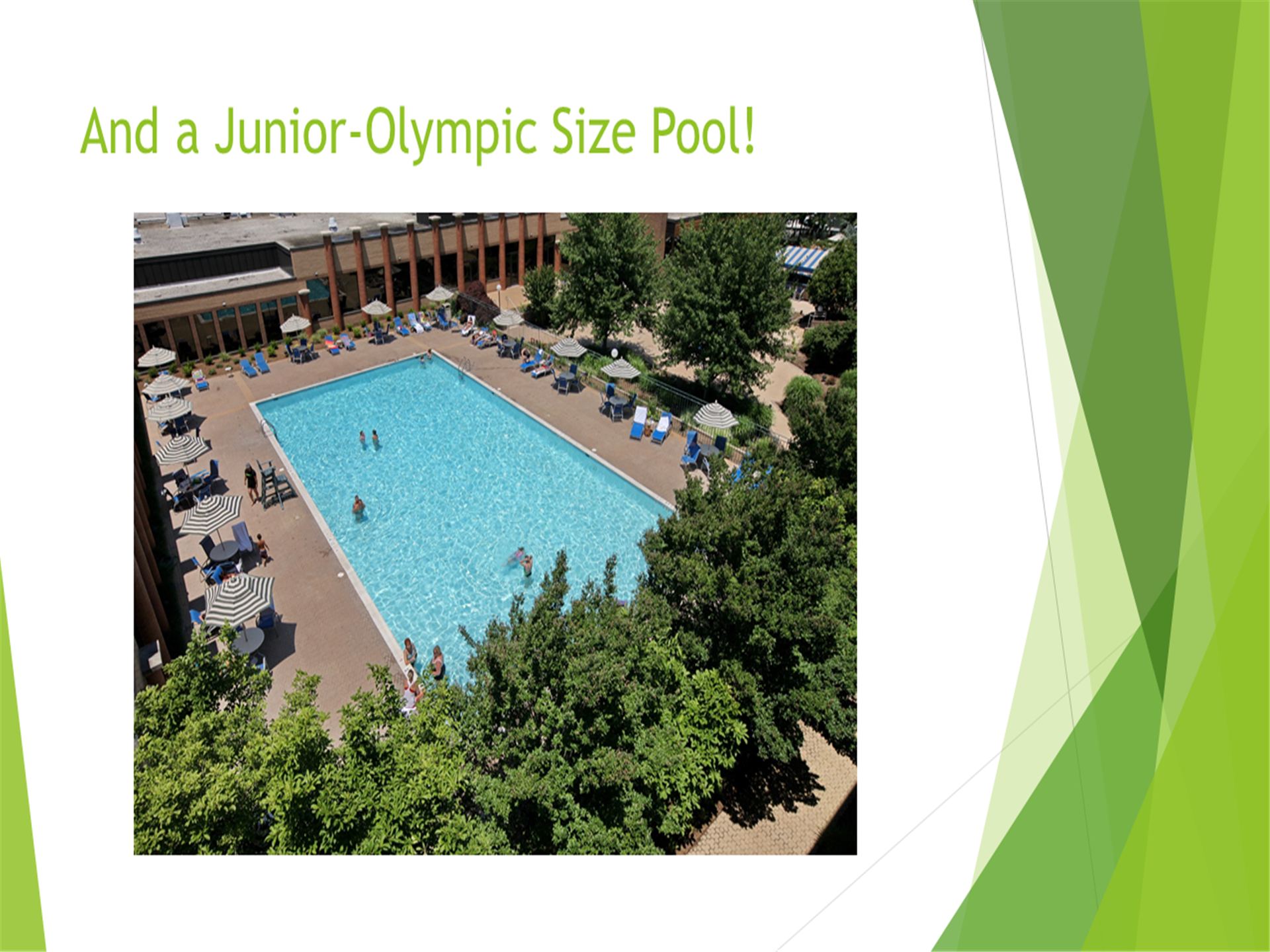And a junior-Olympic size pool! Image of the pool area with tables, chairs and umbrellas setup.