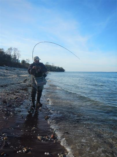 Man tugging on line while surfcasting
