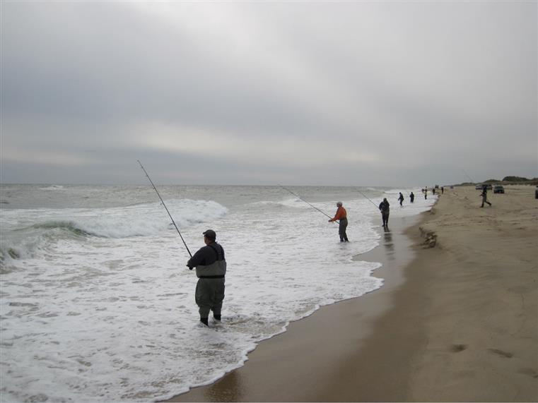 men fishing on the beach