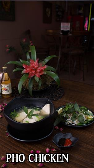 Pho chicken with a side salad next to a plant centerpiece