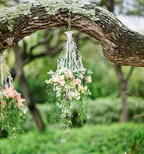 pink dainty flowers hanging from a tree