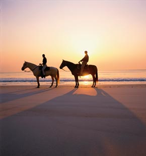 Two people on horses on beach